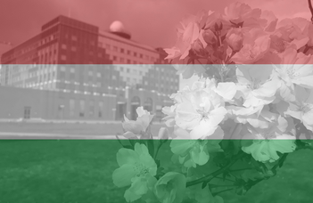 Hungarian language course